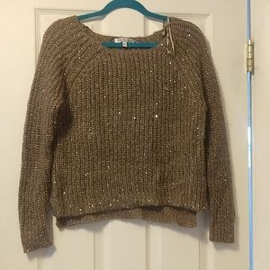 Sparkly tan sweater